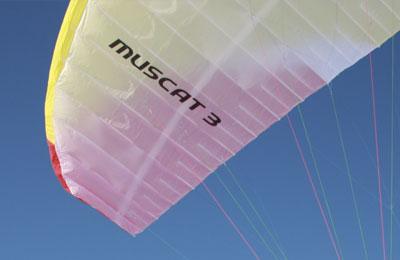 Muscat-3